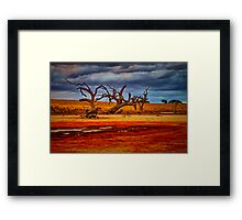 """Rusty Lakebed"" Framed Print"