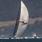 Wild Oats XI winning 2014 Sydney to Hobart race by Odille Esmonde-Morgan