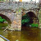 Alyth Bridge by Tom Gomez