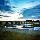Beaugency France by Elizabeth Thomas