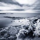 Horseshoe Bay, Port Elliot, S.A, Australia by Anna Vegter