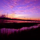 Long Jetty lake Spectacular Sunset by STEPHEN GEORGIOU