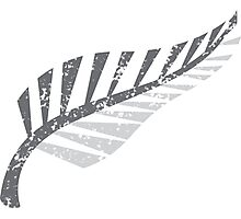 Silver fern distressed  Photographic Print
