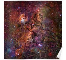 When The Stars Are Right - The Seagull Nebula In Canis Major Poster