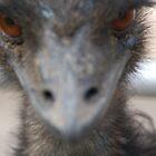 Emu U too... by angela tharp