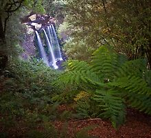 Hopetoun Falls by Paul Pichugin
