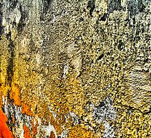 Colored Wall Degeneration by NawfalNur