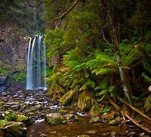 Hopetoun Falls II by Paul Pichugin