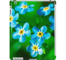 Forget-me-not flowers iPad Case/Skin