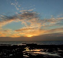 Rockpool Dawn by Jenn Ridley