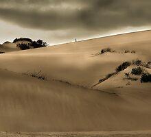 Dune mood by Peter Wickham
