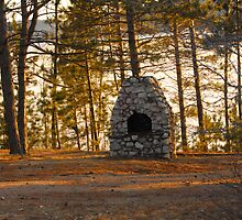 Little Park at Dusk by TerriRiver