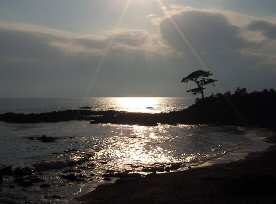 Sunshine on Tateishi Beach by Mui-Ling Teh