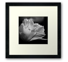 From Darkness. Framed Print