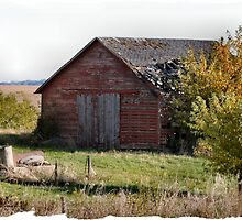 Old Barn by Keala