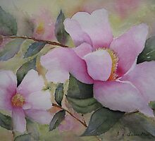 Pink Camellias by Susan Moss