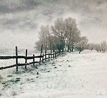 Let it snow, let it snow ... by © Kira Bodensted