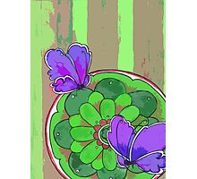 indigo butterfly Photographic Print