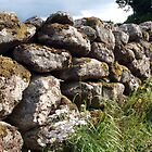 A Wall in Devon by kalaryder