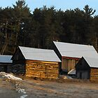 Log Houses by TerriRiver