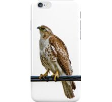 The eye of the hunter iPhone Case/Skin