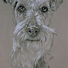 Irish Terrier by BarbBarcikKeith