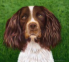 """Major"" Springer Spaniel by Michelle Wrighton"