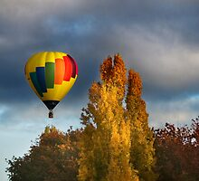 Autumn Flight by Annette Blattman