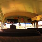 The All Seeing Bus Driver by Diana Forgione