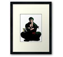 Zoro One Piece Framed Print
