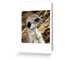 What Was That????? Greeting Card