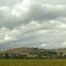 Yarra Glen Autumn by retsilla
