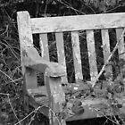 a resting place forgotten by Lucan  Netley (LDN Photoart)
