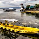 Yellow Tour Boat by Adrian Evans