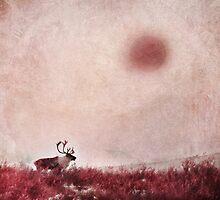 Quest for Solitude by Priska Wettstein
