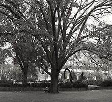 Walking through the University Square by Ashley Ng