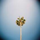 la palm by rakastajatar