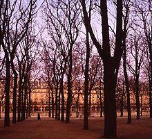 Winter walk Jardin de Tuiliers, Paris (Dry Brush watercolour effect) by ozjohnson