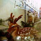 Who Killed Bambi. by - nawroski -