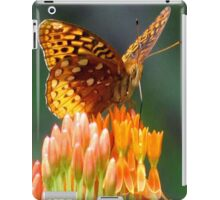 A Feast For The Eyes  iPad Case/Skin