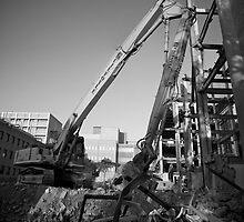 The Crane by Ashley Ng