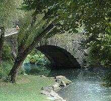 Gapstow Bridge by Jennifer  Causley