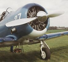 Radial Engine by Edward Denyer