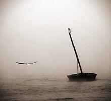 Lonesome fugitive by Gabor Dvornik