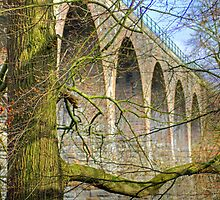 Almondell Viaduct by Tom Gomez