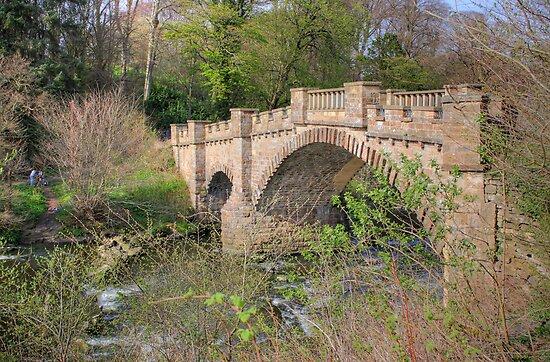 Old Bridge III by Tom Gomez