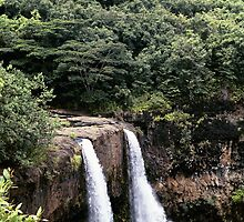 Wailua Falls, from the top, Kauai, HI by rmenaker