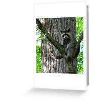 """""""This Is Where I Go To Relax"""" Greeting Card"""