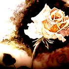 Golden Rose by elayne001