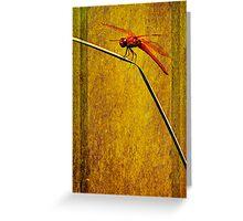 Flame Skimmer Greeting Card